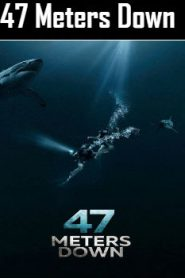 47 Meters Down (2017) Online Free Watch Full HD Quality Movie