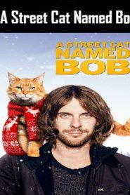 A Street Cat Named Bob (2016) Online Free Watch Full HD Quality Movie