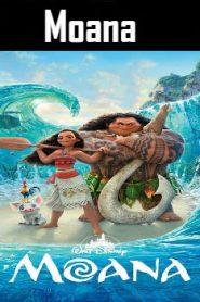 Moana (2016) Online Free Watch Full HD Quality Movie