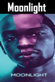 Moonlight (2016) Online Free Watch Full HD Quality Movie
