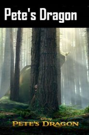 Pete's Dragon (2016) Online Free Watch Full HD Quality Movie