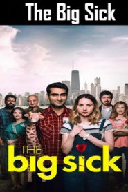 The Big Sick (2017) Online Free Watch Full HD Quality Movie