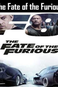 The Fate of the Furious (2017) Online Free Watch Full HD Quality Movie