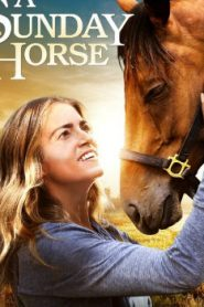 A Sunday Horse (2016) Online Free Watch Full HD Quality Movie