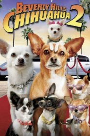 Beverly Hills Chihuahua 2 (2011) Online Free Watch Full HD Quality Movie