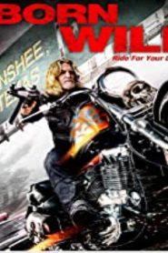 Born Wild (2012) Online Free Watch Full HD Quality Movie