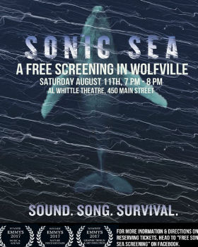 Sonic Sea (2016) Online Free Watch Full HD Quality Movie