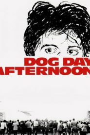 Dog Day Afternoon (1975) Online Free Watch Full HD Quality Movie