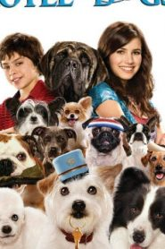 Hotel for Dogs (2009) Online Free Watch Full HD Quality Movie