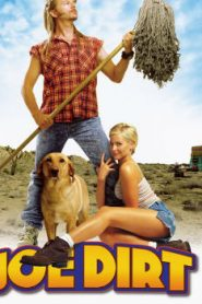 Joe Dirt (2001) Online Free Watch Full HD Quality Movie