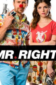 Mr. Right (2015) Online Free Watch Full HD Quality Movie