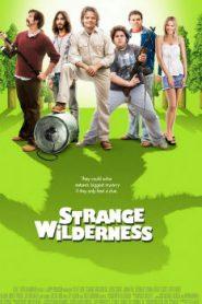 Strange Wilderness (2008) Online Free Watch Full HD Quality Movie