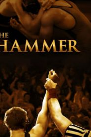 The Hammer (2010) Online Free Watch Full HD Quality Movie