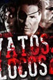 Vatos Locos 2 (2016) Online Free Watch Full HD Quality Movie