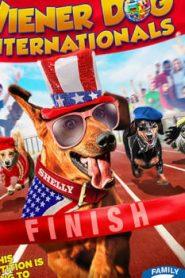 Wiener Dog Internationals (2017) Online Free Watch Full HD Quality Movie