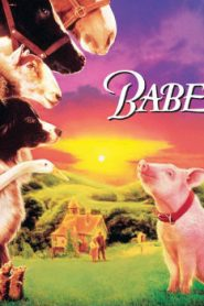 Babe (1995) Online Free Watch Full HD Quality Movie