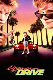 License to Drive (1988) Online Free Watch Full HD Quality Movie