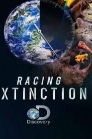 Racing Extinction (2015) Online Free Watch Full HD Quality Movie