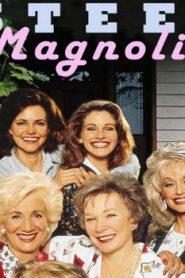 Steel Magnolias (1988) Online Free Watch Full HD Quality Movie