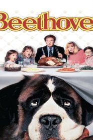 Beethoven (1992) Online Free Watch Full HD Quality Movie