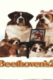 Beethoven's 2nd (1993) Online Free Watch Full HD Quality Movie