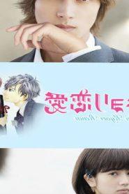Close Range Love (2014) Online Free Watch Full HD Quality Movie