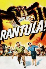 Tarantula (1995) Online Free Watch Full HD Quality Movie