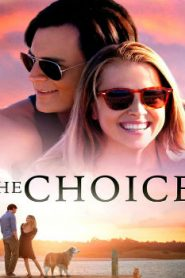 The Choice (2016) Online Free Watch Full HD Quality Movie