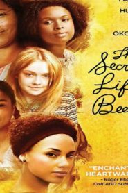 The Secret Life of Bees (2008) Online Free Watch Full HD Quality Movie