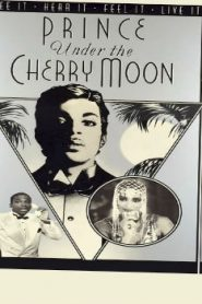 Under the Cherry Moon (1986) Online Free Watch Full HD Quality Movie