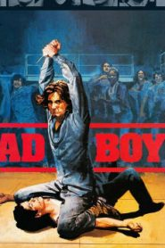Bad Boys (1983) Online Free Watch Full HD Quality Movie
