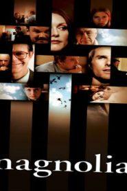Magnolia (1999) Online Free Watch Full HD Quality Movie