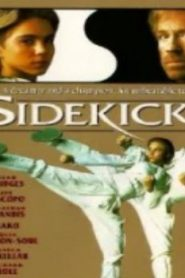 Sidekicks (1992) Online Free Watch Full HD Quality Movie