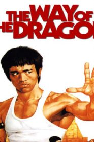 The Way of the Dragon (1972) Online Free Watch Full HD Quality Movie