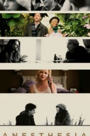 Anesthesia (2015) Online Free Watch Full HD Quality Movie
