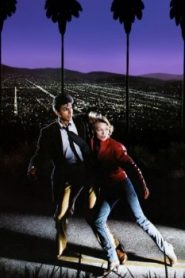 Into the Night (1985) Online Free Watch Full HD Quality Movie