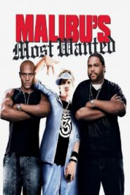 Malibu's Most Wanted (2003) Online Free Watch Full HD Quality Movie