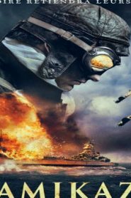 The Eternal Zero (2013) Online Free Watch Full HD Quality Movie