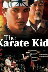 The Karate Kid (1984) Online Free Watch Full HD Quality Movie