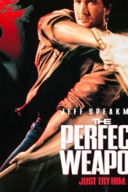 The Perfect Weapon (1991) Online Free Watch Full HD Quality Movie