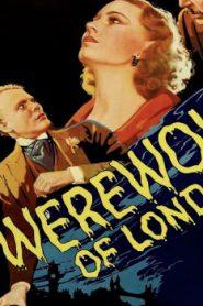 Werewolf of London (1935) Online Free Watch Full HD Quality Movie