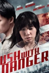 Brush with Danger (2015) Online Free Watch Full HD Quality Movie