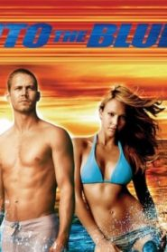 Into the Blue (2005) Online Free Watch Full HD Quality Movie