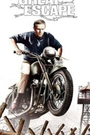 The Great Escape (1963) Online Free Watch Full HD Quality Movie