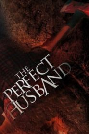 The Perfect Husband (2015) Online Free Watch Full HD Quality Movie
