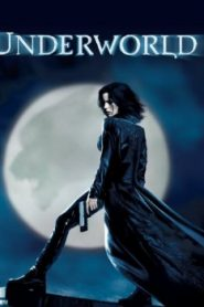 Underworld (2013) Online Free Watch Full HD Quality Movie