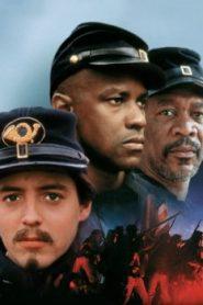 Glory (1989) Online Free Watch Full HD Quality Movie
