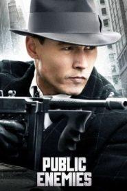 Public Enemies (2009) Online Free Watch Full HD Quality Movie